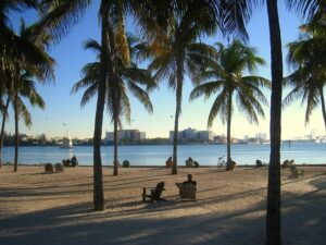miami beach perfect for celebrities