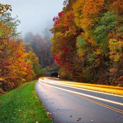 A photo of elapsed driving on a bend on Blue Ridge Parkway with the fall foliage starting to turn.
