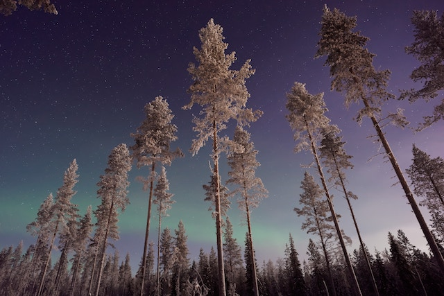 The Laplands in Finland is one of the landscapes to catch the aurora borealis.